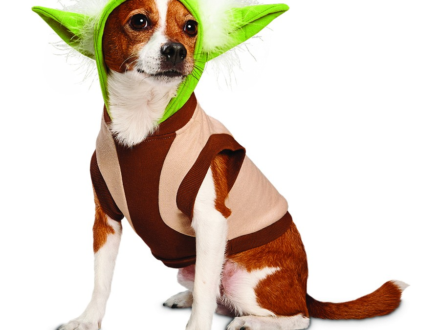Star Wars theme stuff for pets! Yes, Fido, there is a Santa Claus