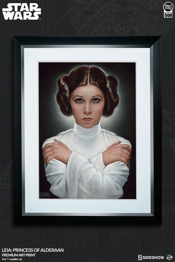 Leia: Princess of Alderaan AP 3