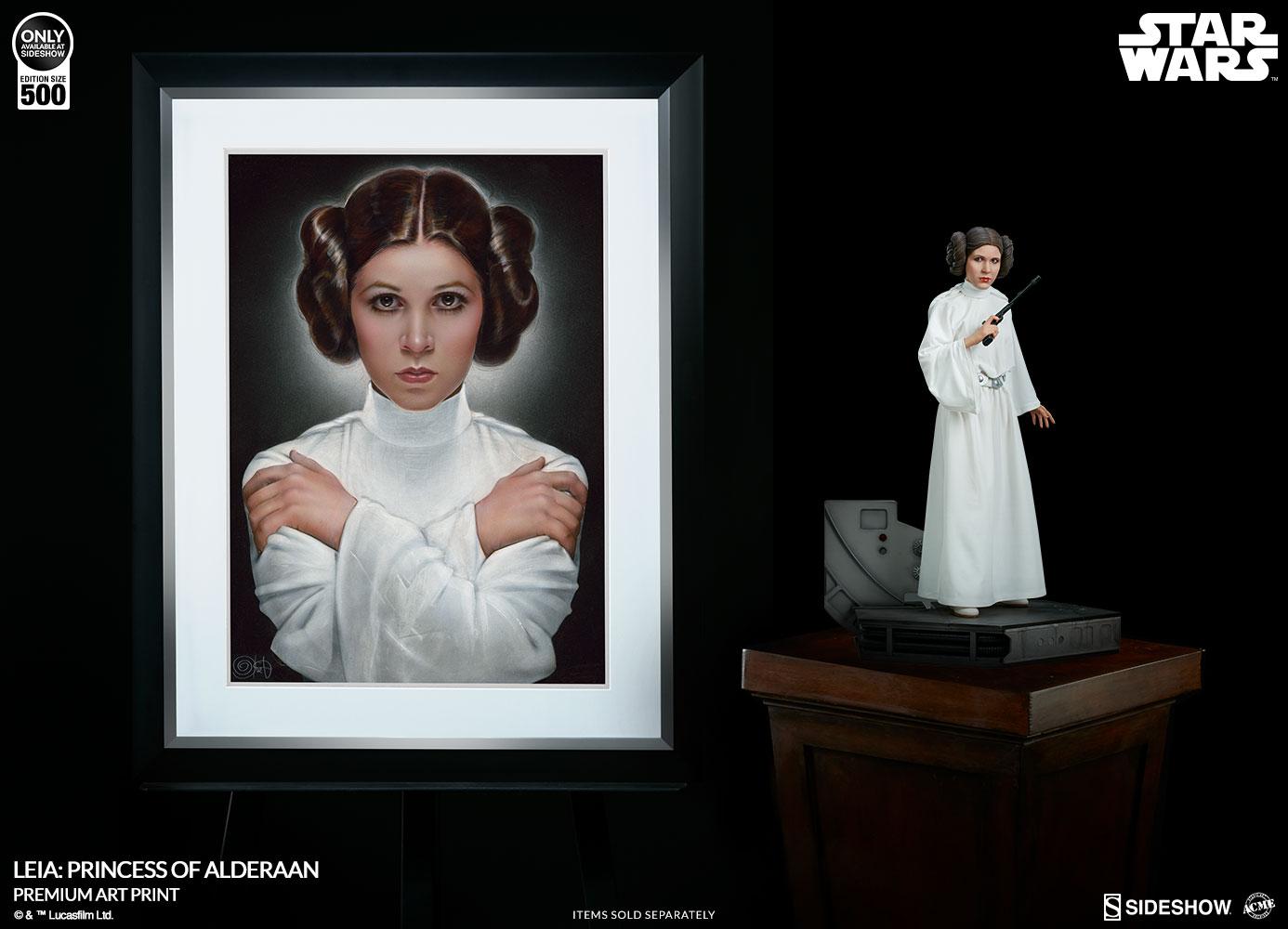 Leia: Princess of Alderaan AP 2