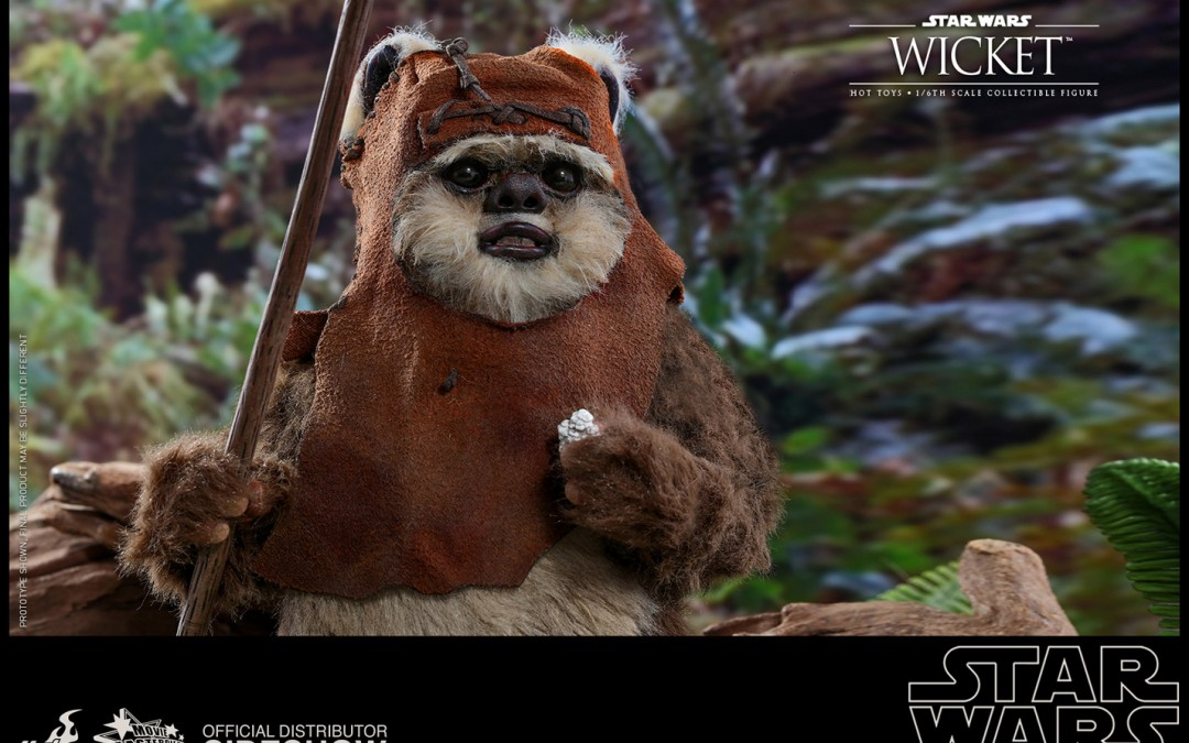New Return of the Jedi Wicket 1/6th Scale Figure available for pre-order!